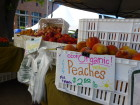 West Sac Farmer's Market