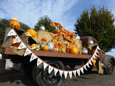 Dave's pumpkin patch truck