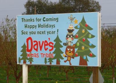 Thanks Dave's Xmas Trees
